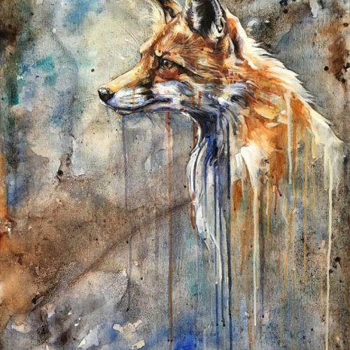 foxgaze-sm