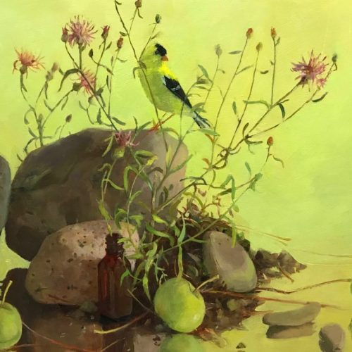 Still Life with Goldfinch 11 x 14 $650